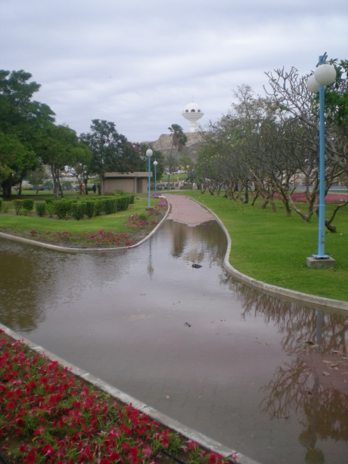 rainwater