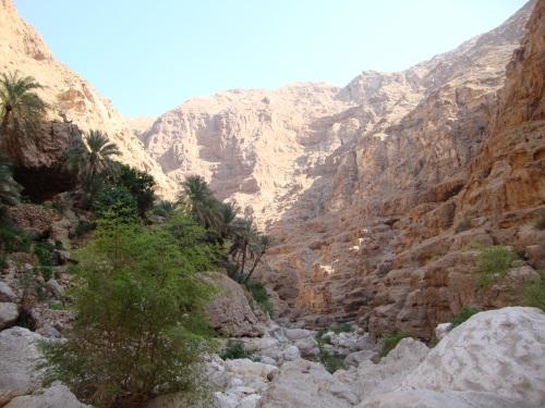 wadi scene