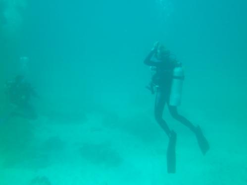 nina underwater