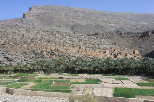 wadi ghul and fields