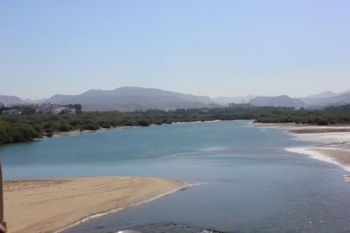 qurum mangrove area