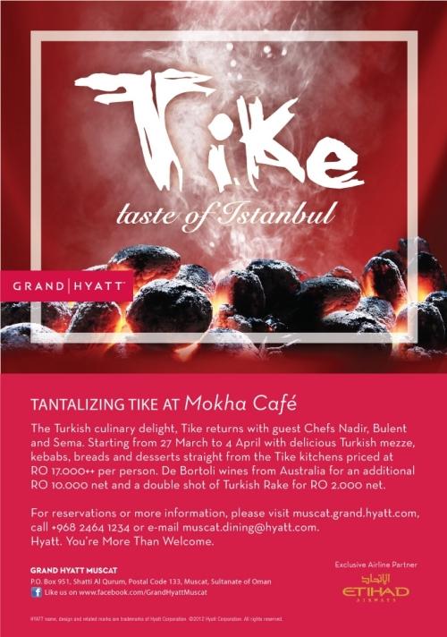 Tike flyer 2013