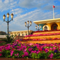Colorful Flowers at Sultans Palace