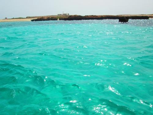 clear water of damaniyats