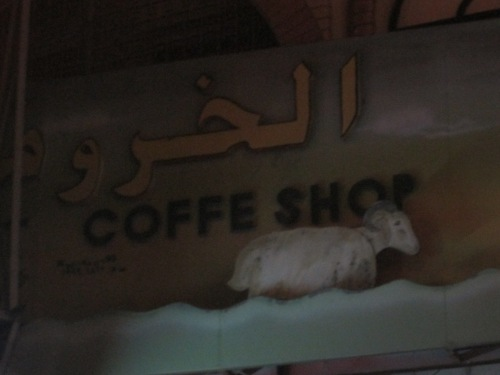 golden sheep coffe shop