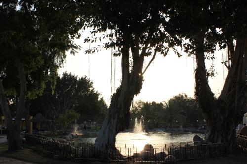 Naseem Gardens