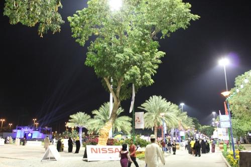 festival at naseem garden