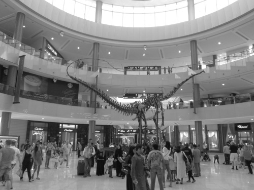 black and white dino